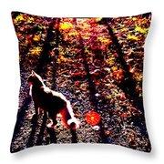 December Walk In The Blue Ridge Throw Pillow