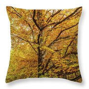 Deciduous Forest In The Autumn Throw Pillow
