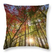 Decorated By Japanese Maple Throw Pillow