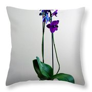 Decorative Orchid Photo A6517 Throw Pillow