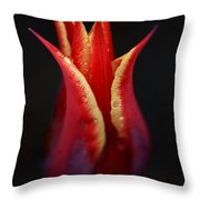 Decorative Tulip Throw Pillow