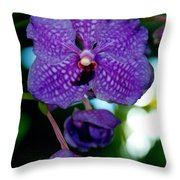 Deep Blue Orchid Throw Pillow