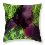 Deep Burgundy Iris Throw Pillow