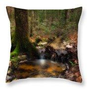 Deep Forest Creek Throw Pillow