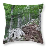 Deep Forest Rocky Path Nature Throw Pillow