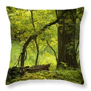 Deep Forest Scenic Throw Pillow