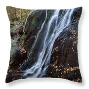 Deep Hallow Falls Virginia Throw Pillow