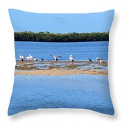 Deep Haven Throw Pillow