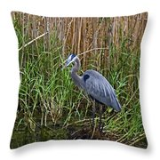 Deep In The Swamps Throw Pillow