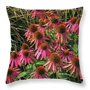 Deep Pink Echinacea Straw Flowers Green Leaf And Grass Background 2 9132017 Throw Pillow