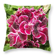 Deep Purple Geranium Throw Pillow