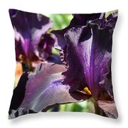 Deep Purple Irises Dark Purple Irises Summer Garden Art Prints Throw Pillow