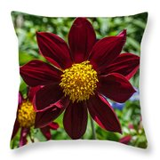 Deep Red And Yellow Flowers Throw Pillow