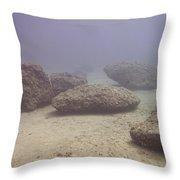 Deep Rocks Throw Pillow