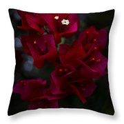 Deep Scarlet Glabra Throw Pillow