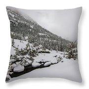 Deep Winter River Throw Pillow