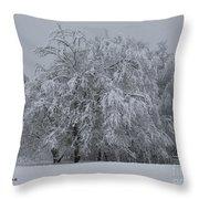 Deep Winter Throw Pillow