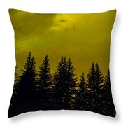 Deep Within Throw Pillow by Barbara Schultheis