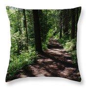 Deep Woods Road Throw Pillow