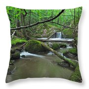 Deep Woods Stream 2 Throw Pillow