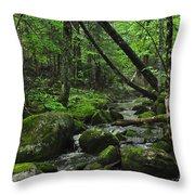 Deep Woods Stream 3 Throw Pillow