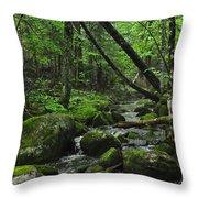 Deep Woods Stream 3 Throw Pillow