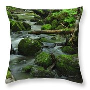 Deep Woods Stream Throw Pillow