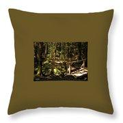 Deep Woods Trail Throw Pillow