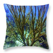 Deepwater Gorgonia Throw Pillow