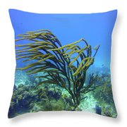 Deepwater Gorgonia Just Flowing In The Wind Throw Pillow