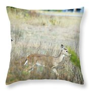 Deer 006 Throw Pillow