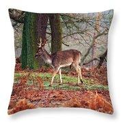 Deer Among The Ferns Throw Pillow