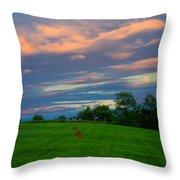 Deer And Rising Moon Throw Pillow