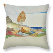 Deer And Stream Throw Pillow