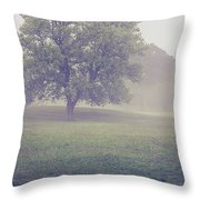 Deer By Barn On A Foggy Morning Throw Pillow