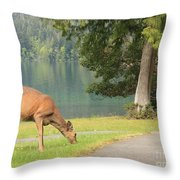 Deer By Crescent Lake Throw Pillow