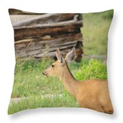 Deer By Ghost Town Throw Pillow