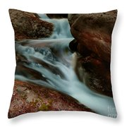 Deer Creek 04 Throw Pillow