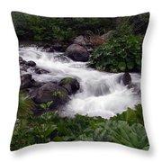 Deer Creek 07 Throw Pillow
