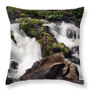 Deer Creek 12 Throw Pillow