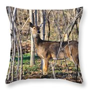 Deer Early Spring Throw Pillow