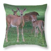 Deer Family Out For Evening Stroll Throw Pillow