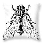 Deer Fly Throw Pillow