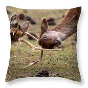 Deer Games Throw Pillow
