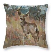Deer In A Field Throw Pillow
