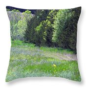 Deer In Clearing Throw Pillow