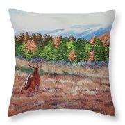 Deer In Fall Throw Pillow