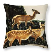 Deer In Forest Clearing Throw Pillow
