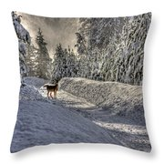 Deer In Snow Throw Pillow