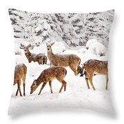 Deer In The Snow 2 Throw Pillow
